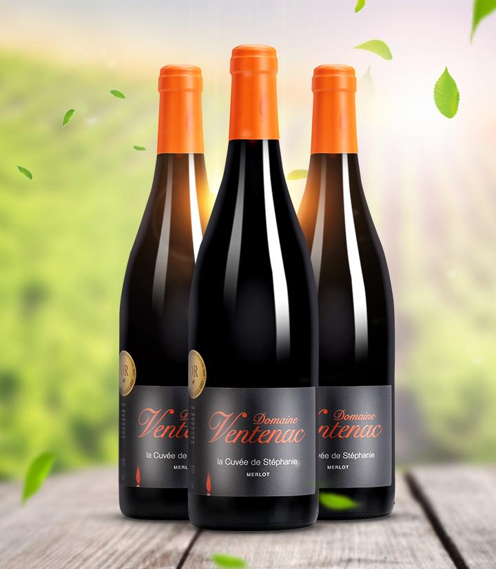 13°法国万特纳庄园思狄梵特酿干红葡萄酒750ml 瓶